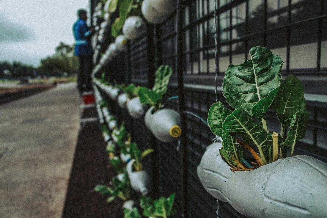 Se buscan iniciativas de economía circular
