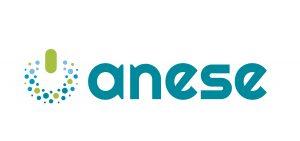 Logo Anese